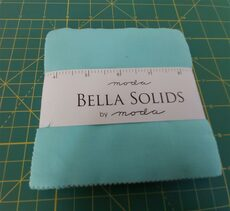 Bella Solids ROBINS EGG